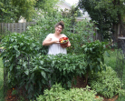 Gardeners Community Connection – Kimber Hawkey